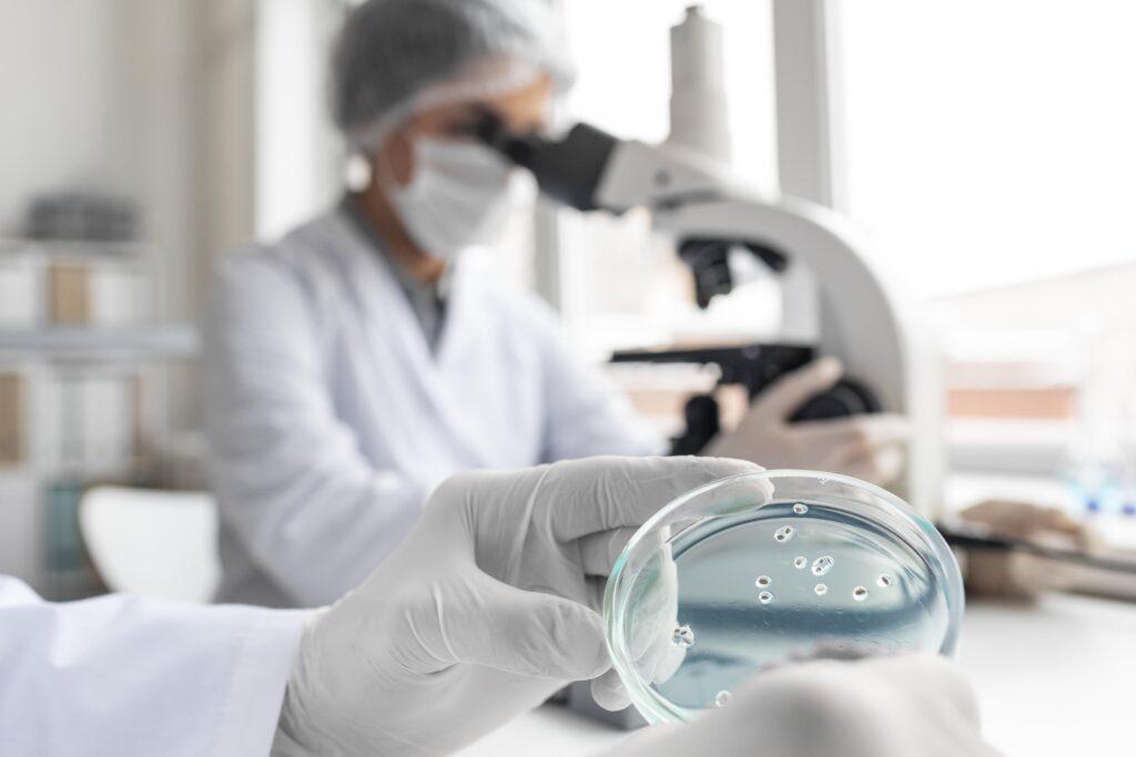 Colônia de bactérias em uma lâmina, análise laboratorial de água de piscina